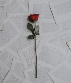 Najpiękniejsze listy miłosne w historii